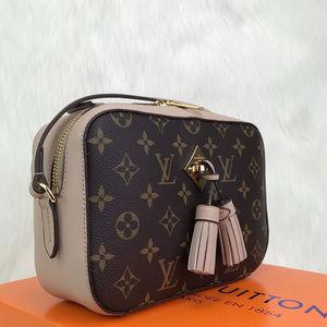 LV Saintonge Bag